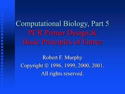 Subcloning Primer Design Ppt Computational Biology Part 5 Pcr Primer Design