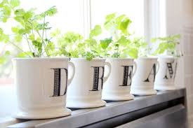 apartment herb garden. Windowsill Herb Garden Apartment
