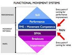 42 Best Functional Movement Screens Images Exercise Squat
