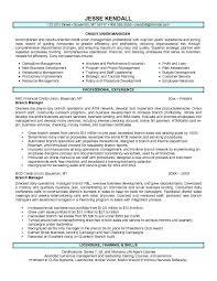 Resume Format For Assistant Manager In Bank Cover Letter Samples