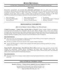 Law School Resume Gorgeous Sample Law School Resume Best Resume Collection
