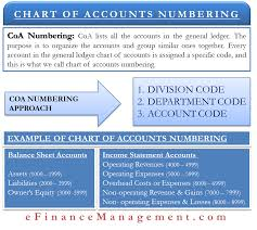 Typical Chart Of Accounts Numbering System Chart Of Accounts Numbering Meaning Approach Example