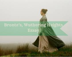 an emily bronte wuthering heights essay by essaythinker com an emily bronte wuthering heights essay