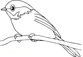 Printable Coloring Page Birds Birds Printable Coloring Pages Bird