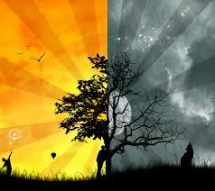 light in essay scholarship application essay sample light in essay good vs evil light in essayhtml