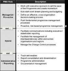 Image Labels Pm Majik Define Programme Management Office Pm Majik