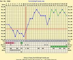 Bbt Chart Bfp Clomid Pregnancy Bb Charts With Implantation Dip