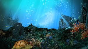 أكبر تجميع لأجمل صور من اعماق البحار (سبحان الله الخالق العظيم) Images?q=tbn:ANd9GcQRzjOq4H1b0nD4nbMgfKD5RN32FmXm7q-U2E8uvYVcHHn8Vi2_