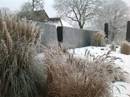 Small Picture 109 best Winter garden images on Pinterest Winter garden Garden