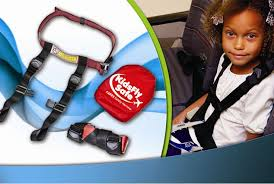 cares harness in action jpg