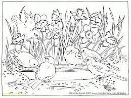 nature colouring pages. Interesting Nature Informative Coloring Pictures Of Nature Mainstream Successful Color Pages  With For Colouring O