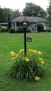 Lamp Post Flowers Driveway Ideas Exterior Flower Best Only On