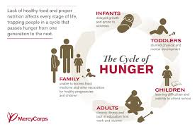hunger is more than missing a meal it is a lifelong cycle that the hunger cycle has millions of families in its grip see the infographics and get the key facts about global hunger