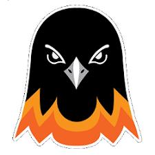 Baltimore Orioles Concept Logo | Sports Logo History
