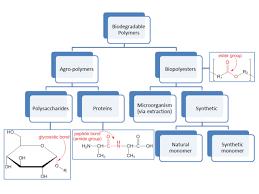 Biodegradable Polymer Wikipedia