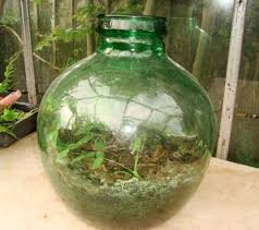 this old terrarium needs some preparing before it can be used