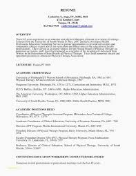 Professional Accounting Resume Templates And Speech Pathology Resume