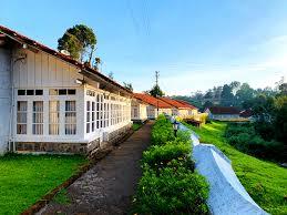 stay in kodaik holiday home resort