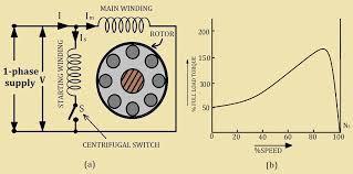 split phase single phase induction motors