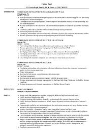 Development Director Resume Corporate Development Director Resume Samples Velvet Jobs 8