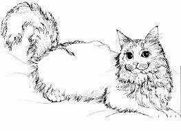 Small Picture Warrior Cat Coloring Pages Coloring Home Coloring Coloring Pages