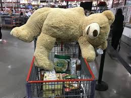 just another teddy bear waiting to go to
