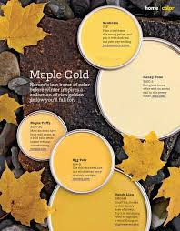 better homes and gardens paint. Fine Gardens Better Homes And Gardens Paint Colors   Design  5 Maple Gold Paint  Colors From Better Homes U0026 Gardens And