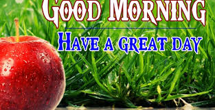 good morning friends images good