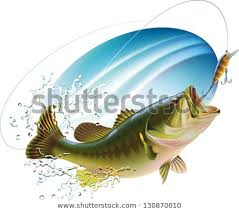 largemouth bass jumping. Perfect Largemouth Largemouth Bass Is Catching A Bite And Jumping In Water Spray Layered  Vector Illustration To Bass Jumping S