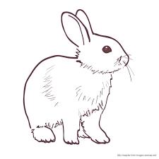 Bunnyおしゃれまとめの人気アイデアpinterest Yukiko2019