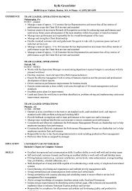 Resume For Team Leader In Bpo Team Leader Operations Resume Samples Velvet Jobs