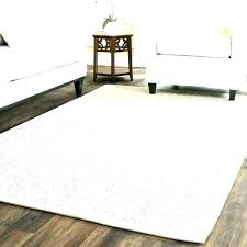 area rugs casual look wool sisal for promo code rug with border soft natural