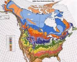 Growing Zone Chart Usa What Is A Hardiness Zone Lovetoknow