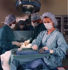 Surgical Tech Salary Surgical Tech Salary The Career Trove