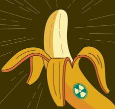 yes we will still have bananas radiated or not the new york times credit harry campbell ldquo
