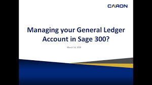 Sage 300 Chart Of Accounts Managing Your General Ledger Accounts In Sage 300