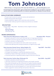 Resume Examples Best Sales Resume Examples 24 For Improved Job Success Online 8