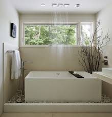 zen bathroom idea with indoor plant and white square freestanding tub with shower and windows