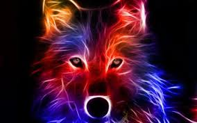blue wolf background. Perfect Wolf HD Wallpaper  Background Image ID199794 1600x1200 Animal Wolf And Blue D