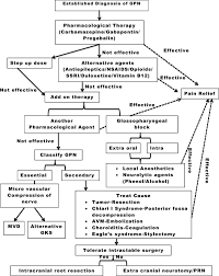 Branches Of Trigeminal Nerve Flow Chart An Uncommonly Common Glossopharyngeal Neuralgia Singh P M