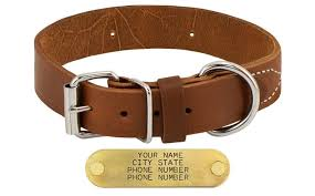 dog deluxe leather standard dog collar