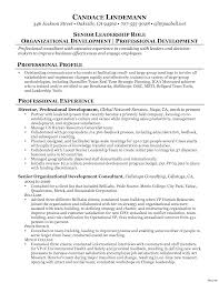 Strategy Consultant Resume Classy Resume Sample Best Management