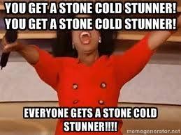 YOU GET A STONE COLD STUNNER! YOU GET A STONE COLD STUNNER ... via Relatably.com