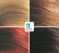 Wella Auburn Color Chart Light Brown Hair Color Chart Wella Bedowntowndaytona Com