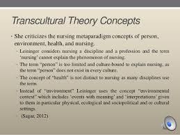 nursing profession transcultural nursing theory transcultural  nursing profession transcultural nursing theory transcultural nursing edu essay