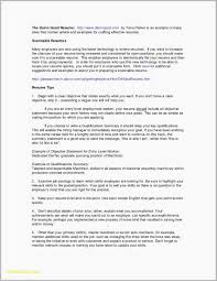 Name Your Resume Stand Out Examples Free Download