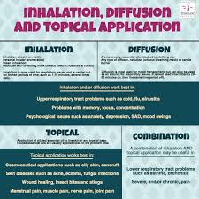 Robert Tisserand Dilution Chart Essential Oil Applications Inhalation Diffusion And