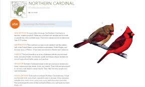 Bible' Way Tweets Songs 'bird Old-fashioned The Npr