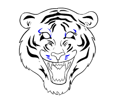 chinese tiger drawing. Fine Tiger How To Draw Tiger Face Step 18 Inside Chinese Drawing