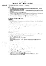 Document Associate Resume Samples Velvet Jobs